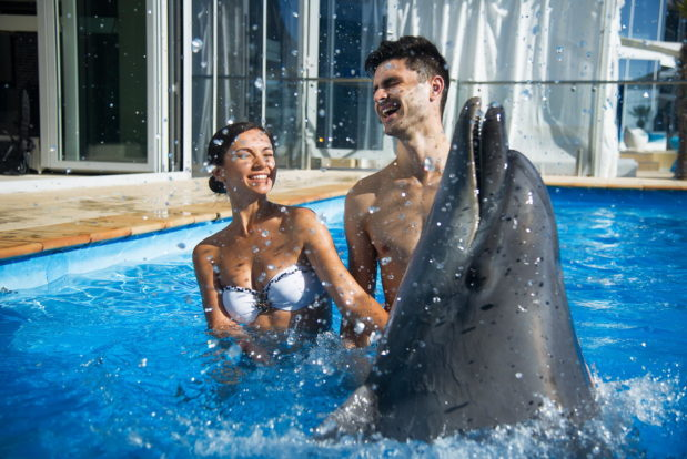 Swimming and diving with dolphins in RESORT & SPA HOTEL NEMO, photo № 20