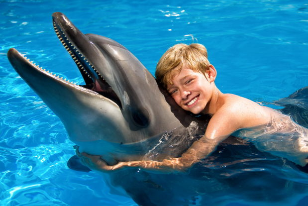 Swimming and diving with dolphins- Hotel NEMO, Photo № 5