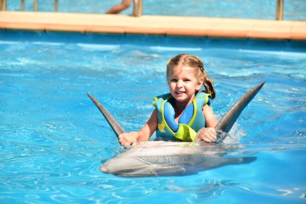 Schwimmen und tauchen mit delphinen im RESORT & SPA HOTEL NEMO, foto № 8