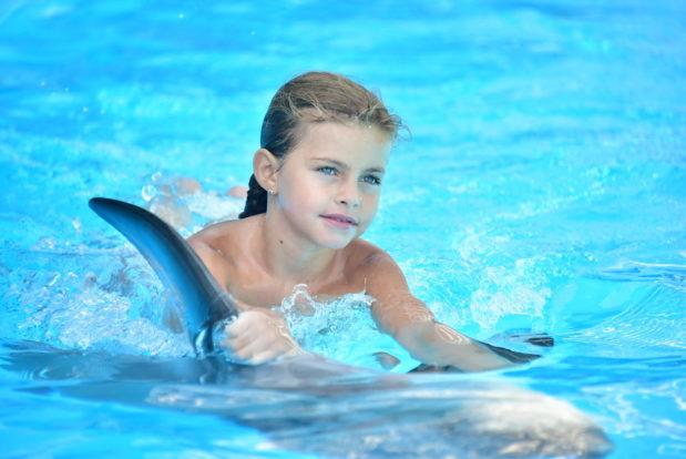 Schwimmen und tauchen mit delphinen im RESORT & SPA HOTEL NEMO, foto № 9