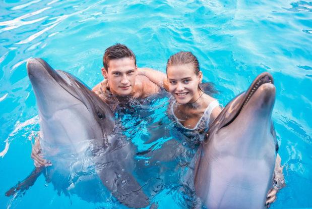 Schwimmen und tauchen mit delphinen im RESORT & SPA HOTEL NEMO, foto № 21