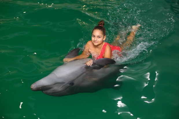Swimming and diving with dolphins- Hotel NEMO, Photo № 9