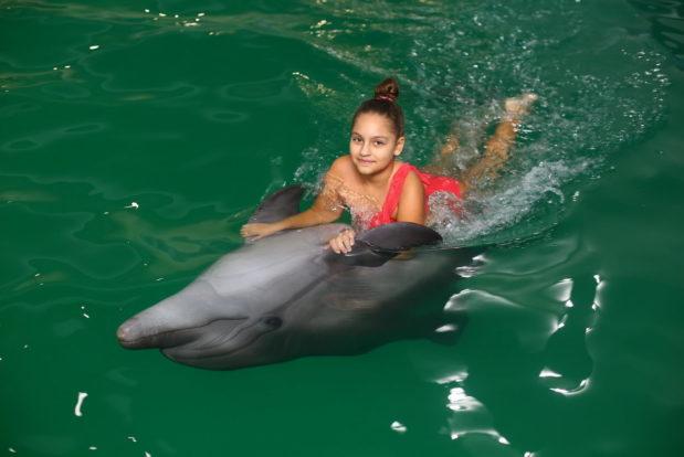 Schwimmen und tauchen mit delphinen im RESORT & SPA HOTEL NEMO, foto № 22