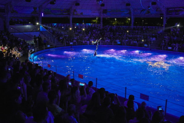 Dolphin show in RESORT & SPA HOTEL NEMO, photo № 45