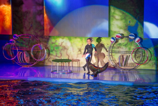 Dolphin show- Hotel NEMO, Photo № 21