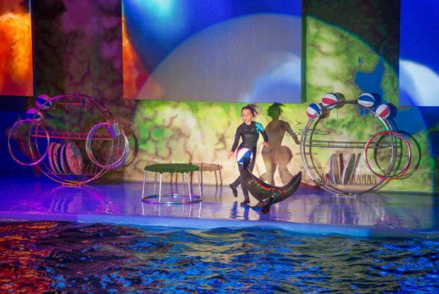 Шоу с дельфинами в RESORT & SPA HOTEL NEMO, фото № 29
