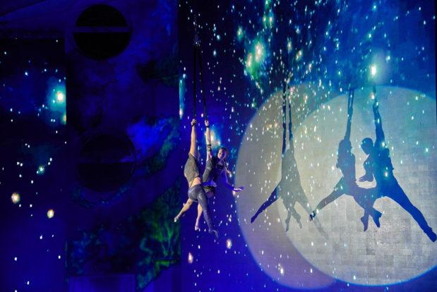 Dolphin show- Hotel NEMO, Photo № 38