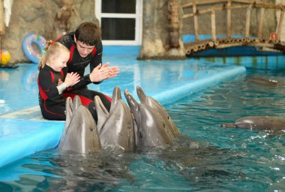 Dolphin assisted therapy - Hotel NEMO, Photo № 13