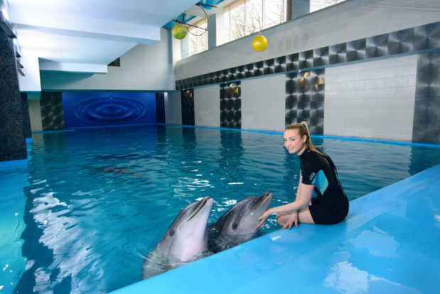 Swimming and diving with dolphins- Hotel NEMO, Photo № 6