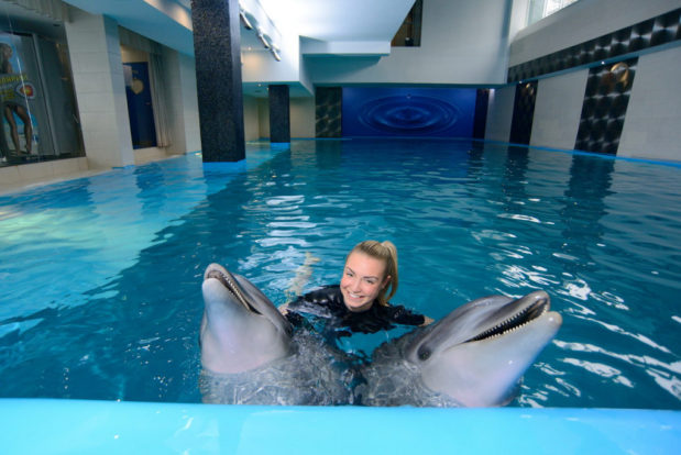 Schwimmen und tauchen mit delphinen im RESORT & SPA HOTEL NEMO, foto № 11