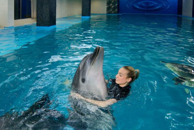 Schwimmen und tauchen mit delphinen im RESORT & SPA HOTEL NEMO, foto № 12