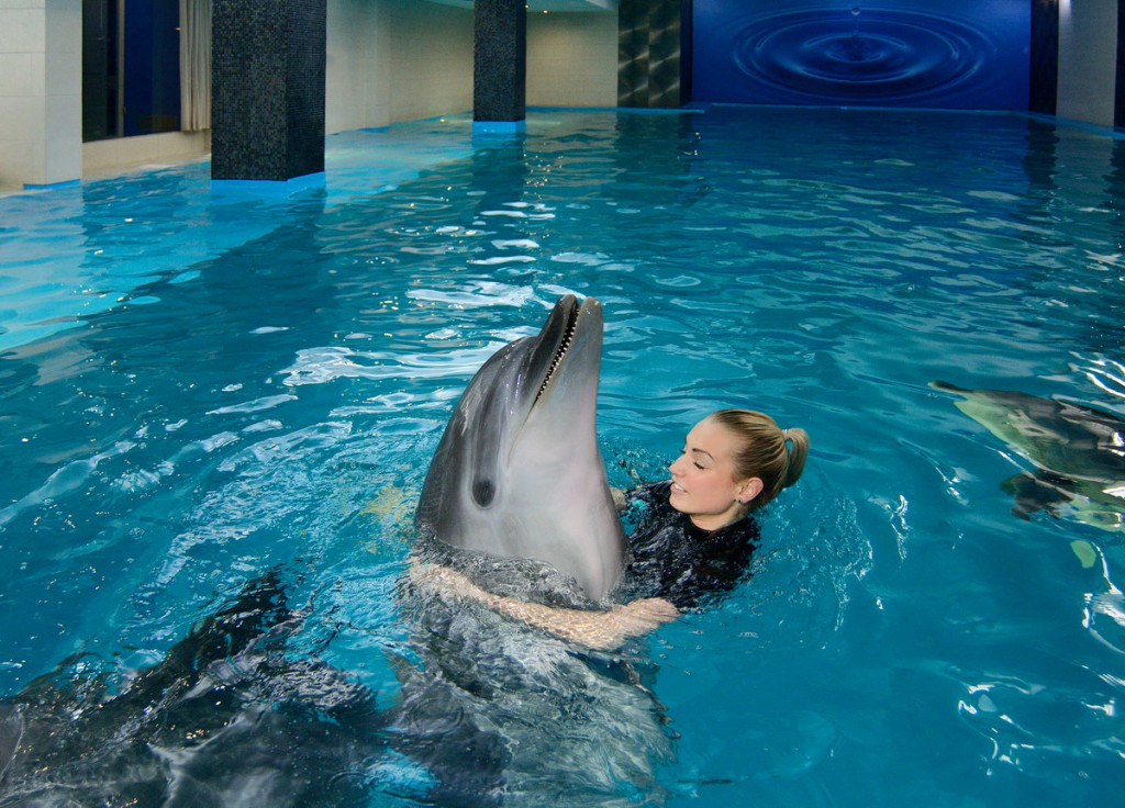 Swimming And Diving With Dolphins In Odessa Nemo Resort