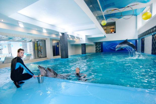 Schwimmen und tauchen mit delphinen im RESORT & SPA HOTEL NEMO, foto № 14