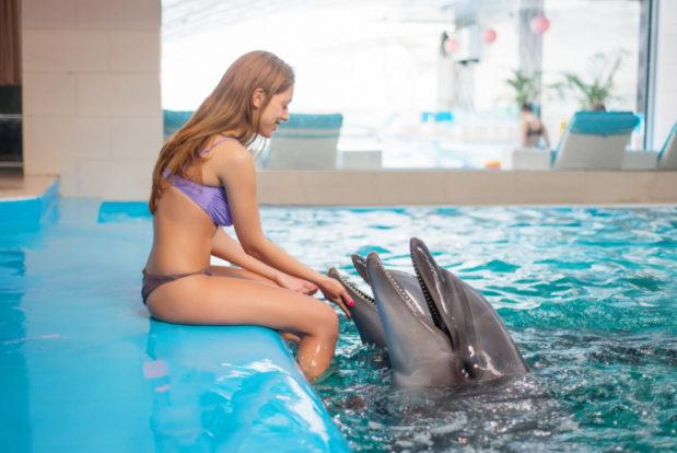 Schwimmen und tauchen mit delphinen im RESORT & SPA HOTEL NEMO, foto № 16
