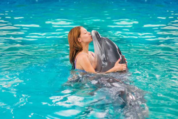 Schwimmen und tauchen mit delphinen im RESORT & SPA HOTEL NEMO, foto № 17