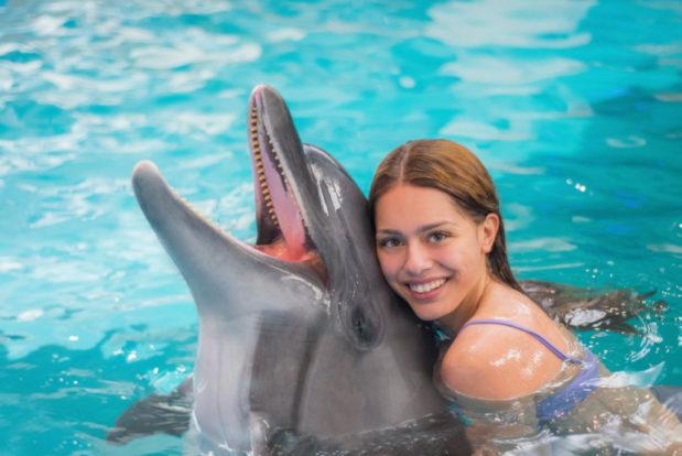 Schwimmen und tauchen mit delphinen im RESORT & SPA HOTEL NEMO, foto № 18