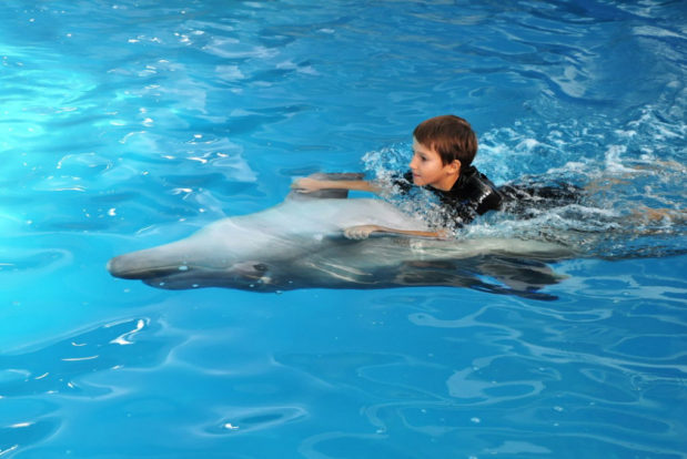 Young dolphin trainer- Hotel NEMO, Photo № 5