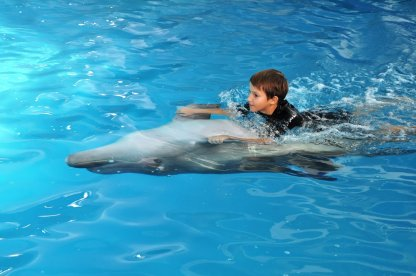 Young dolphin trainer - Hotel NEMO, Photo № 7