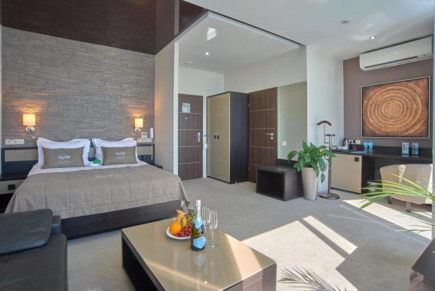 Стандарт в RESORT & SPA HOTEL NEMO, фото № 5