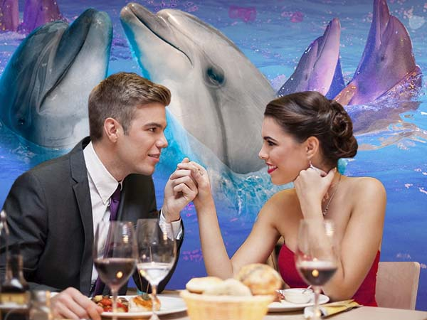 DINNER FOR LOVERS WITH DOLPHINS - NEMO Resort & SPA in Odessa, photo № 11